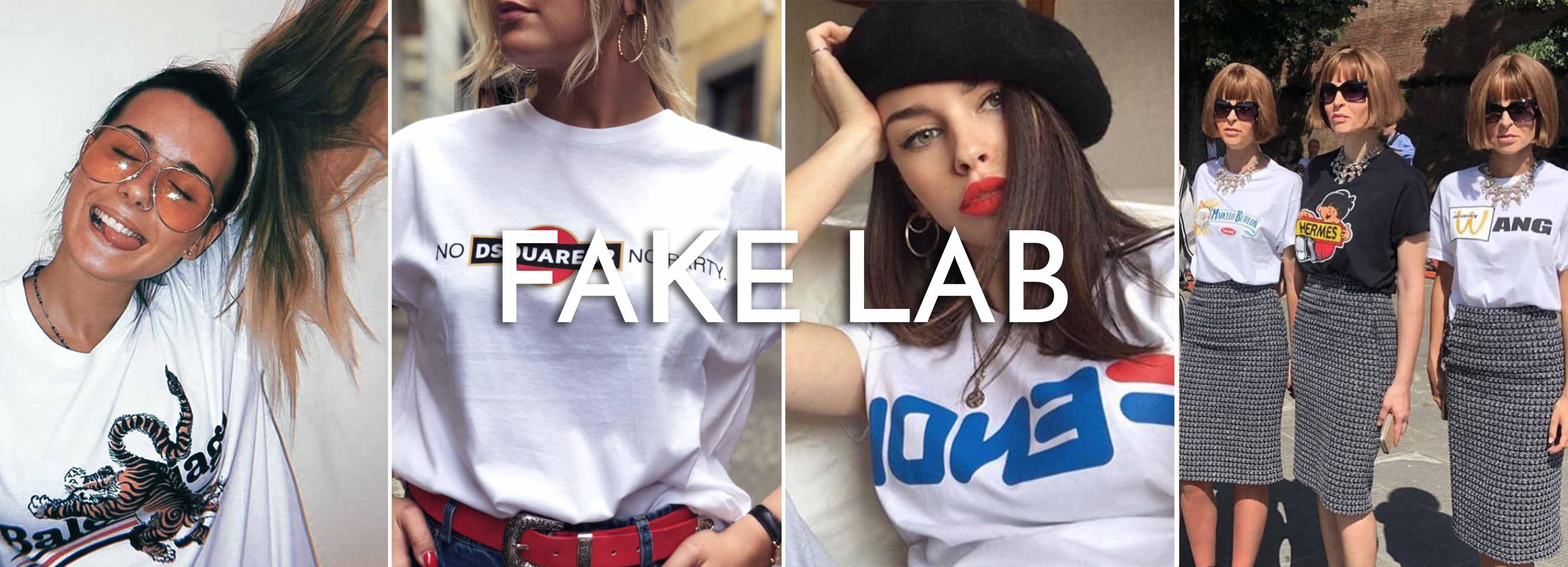 Fake lab